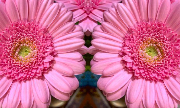Aromaty kwiatów w winie