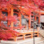 Japońskie inspiracje na długie jesienne wieczory