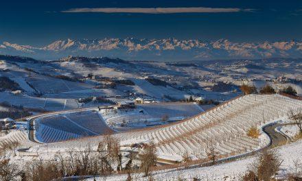 Wina Piemontu